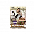 DVD Técnicas Projetos em Cartonagem Vol.02 - By Claudia Wada