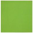 Papel Pop´Set Pistachio 170g - 30,5 x 30,5cm-6 folhas