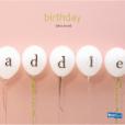 Idea Book - Birthday